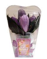 Kúpeľové konfety v darčekovom sete - tulipán_1