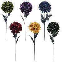 Chryzantéma, 70cm_1
