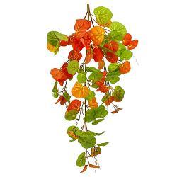 Jesenný ťahavec, 83cm_1