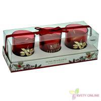 Voňavé vianočné sviečky - happy_1