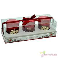 Voňavé vianočné sviečky - cinnamon-apple_1