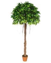 Umelý strom - Fíkus_1