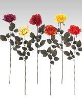 Ruža, 72cm / 6ks_1