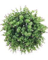 Buxusová guľa kvitnúca, od 23cm_1