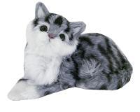 Mačka, 19cm_1